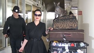 CUTE CAT ALERT! Dita Von Teese Gives Her Cat Aleister A Ride At LAX