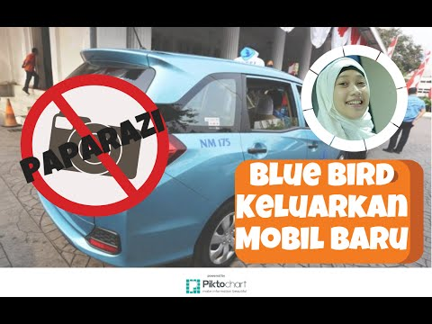 Bali Taxi Blue Bird   Doovi