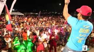 Professional Live at Miami Carnival 2k15