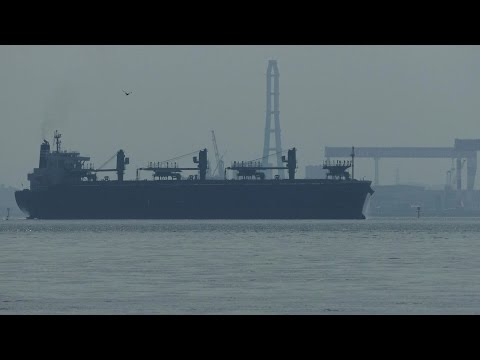 "Wood Chips Carrier ""GLORIOUS JASMINE"" at Nagoya Port"