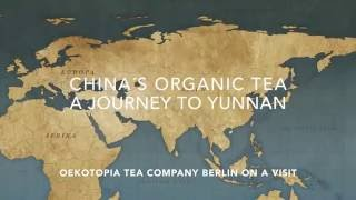 Organic Tea from China - A journey to Yunnan