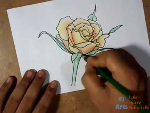 how to draw a beautiful rose flower