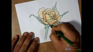 How to Draw a Beautiful Rose Flower How to Color A Rose