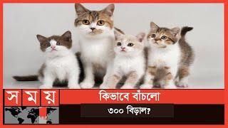 করোনায় বাসা ছেড়ে পালিয়ে যায় মালিক | Cat | Thailand | International News | Somoy TV