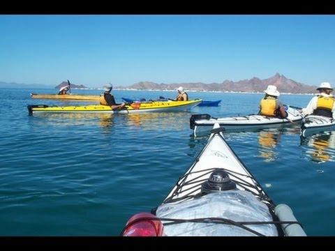 Sea Kayaking & Marine Natural History