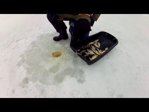 мормышки для ловли красноперки зимой