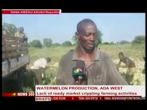 News360-Watermelon production in Ada west often go waste due to lack of ready market -31/1/2016