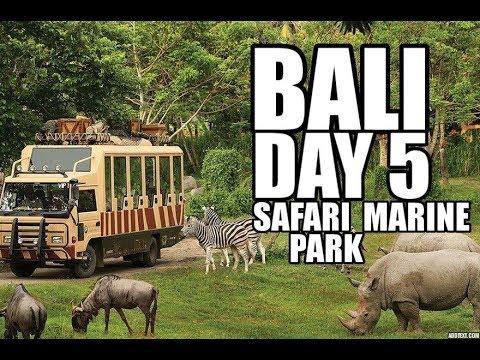 Bali Vacation: Day 5 | Visiting the Bali Safari Marine Park