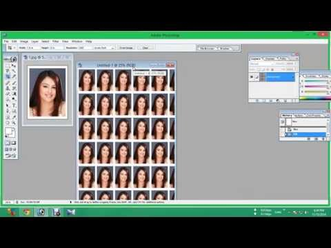 how to make passport size photos on a4 photo sheet afc google penguin 2.1 update