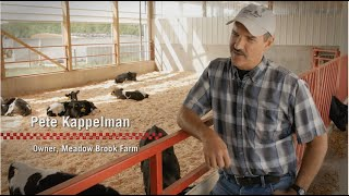 Calf management at Meadow Brook Dairy Farms