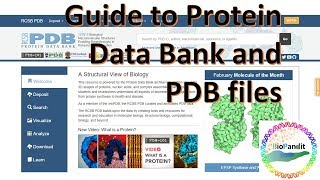 Basic Guide to Protein Data Bank and PDB files
