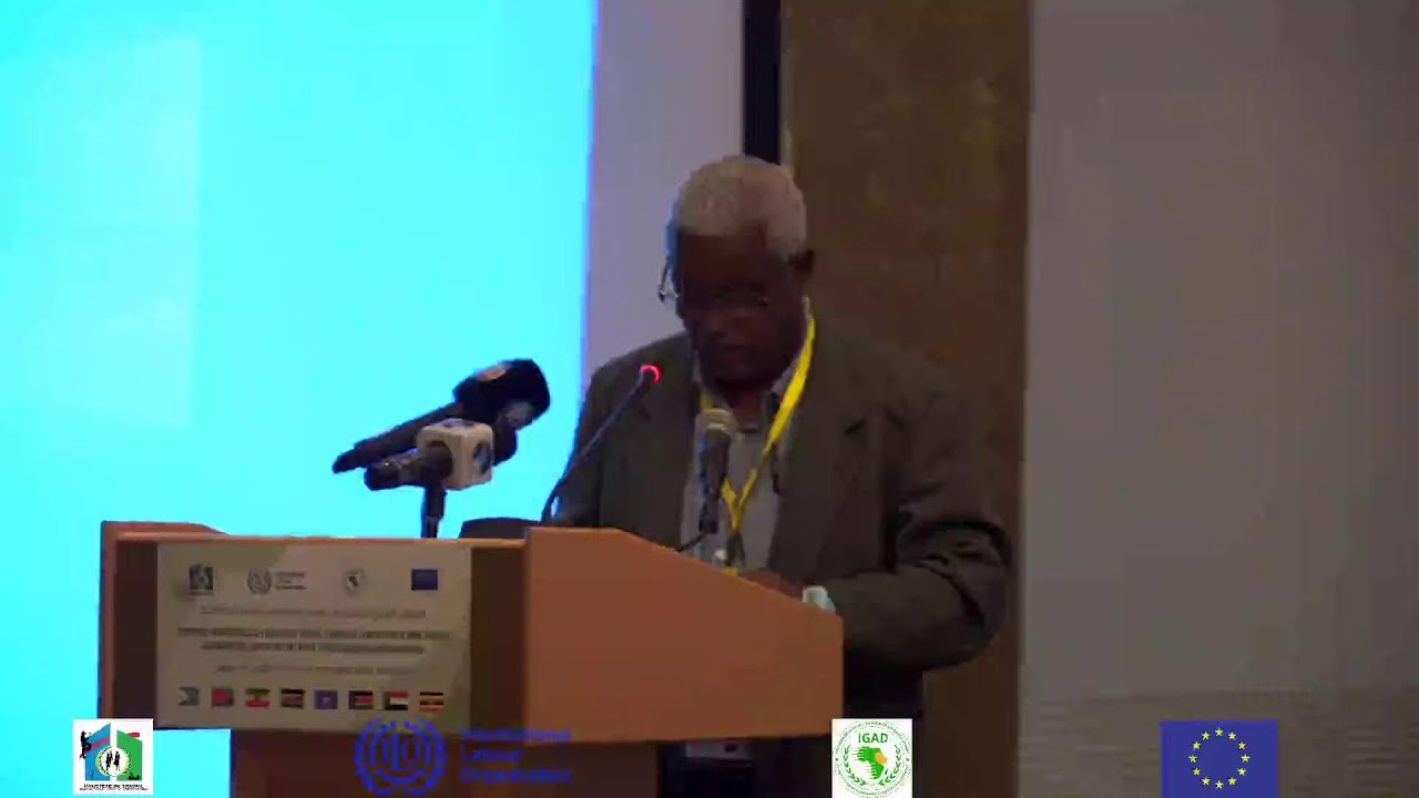 Download IGAD Experts Meeting on Labour, Employment and Labour Migration