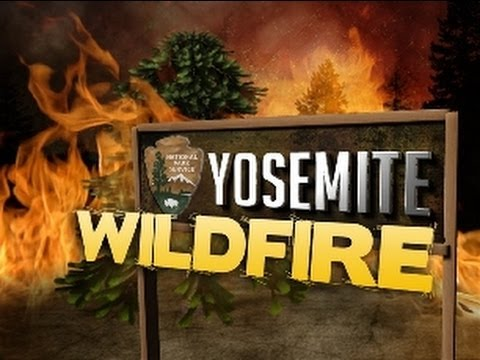 wildfire dating site