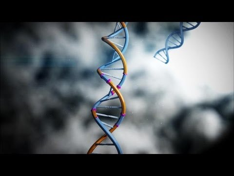 This Was The Birth Of DNA Profiling