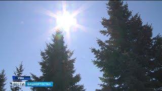 Погода в Башкирии: в республику вновь вернется тепло