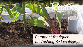 Comment fabriquer un Wicking bed