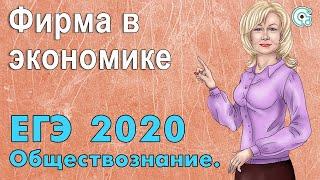 ЕГЭ по Обществознанию 2019. Фирма в экономике