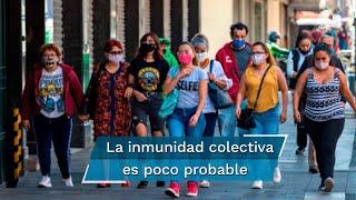 Los resultados de la investigación hizo que científicos concluyeran que es poco probable conseguir una inmunización colectiva ante el virus