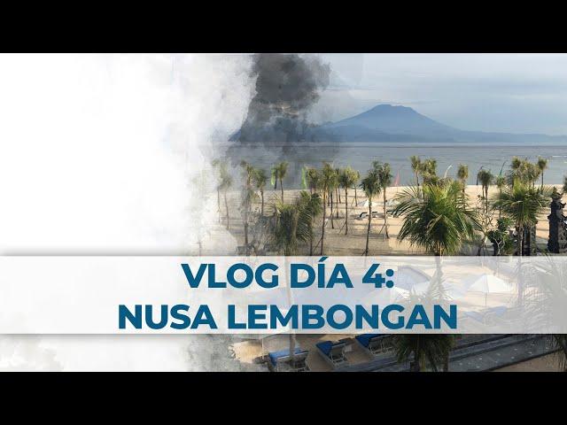 2 Little Divers Bali Vlog Día 4: Traslado a Nusa Lembongan