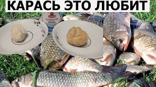 КОРОЛЬ в ШОКЕ Появился НОВЫЙ УБИЙЦА КАРАСЯ Супер рыболовная насадка Тесто для рыбалки