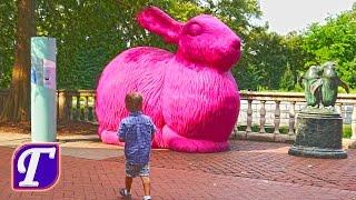 Зоопарк в Америке – Аттракционы и Животные Для Детей Самый Большой Филадельфия Америка Влог Гуляшка