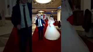 Свадьба лучшего друга