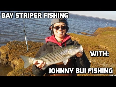 Striper Fishing, Bay Action, NJ, 4/23/15