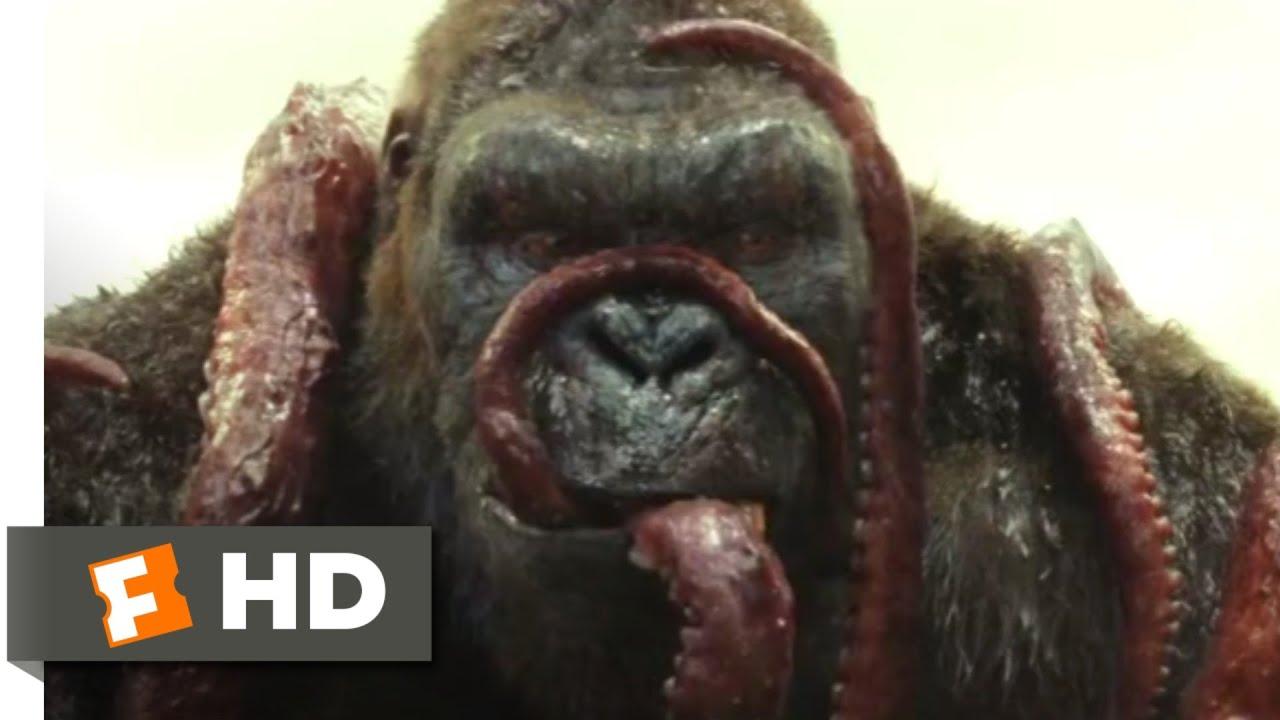 Download Kong: Skull Island (2017) - Kong vs. Giant Squid Scene (3/10) | Movieclips