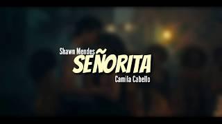 Terjemahan Lagu Señorita Shawn Mendes Feat. Camila Cabello