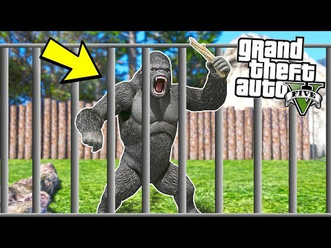 ANGRY Gorillas escape from the Zoo!! (GTA 5 Mods - Evade Gameplay)