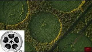Two Big Messages - Two June 12, 2018 Wiltshire Crop Circles