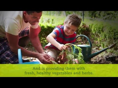 Dominguez Elementary School Garden Time-lapse of Garden Build | Seeds of Change