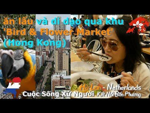 4K | Du Lịch Hong Kong: ăn lẩu và di dạo qua khu Bird & Flower Market