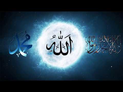 Гари Миллер - Коран – удивительная книга