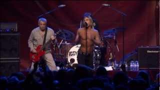 N°2 - Iggy and The Stooges -Search & Destroy (Live Pression Live au Casino de Paris 2012)