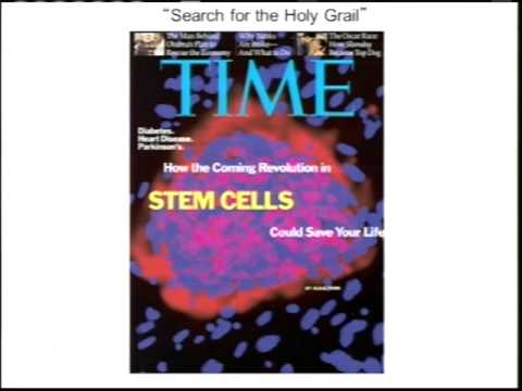 TRACO 2014 - Cervical cancer; Cancer stem cells