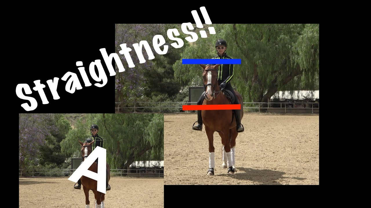 Rider Symmetry and Straightness