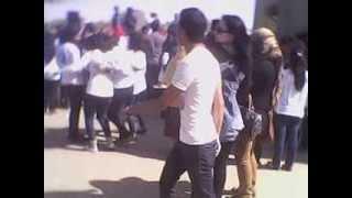 جامعة حلوان اداب حلوان فضيحة رقص بنات وشباب 2013