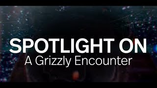 Spotlight on: A Grizzly Encounter