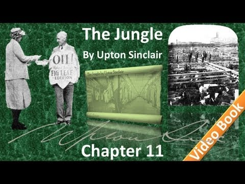 Chapter 11 - The Jungle by Upton Sinclair