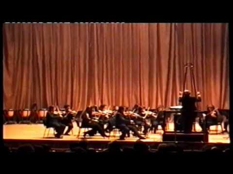 Tchaikovsky Serenade for Strings 1st movement