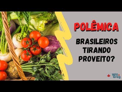 Brasileiros pegando comida de graça sem precisar no Canada? Polêmica