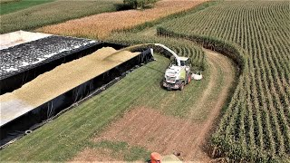 Corn Silage Harvest Efficiency