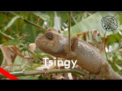 Tsingy, Tsingy rouge et montagne d'ambre : Road trip au Nord de Madagascar
