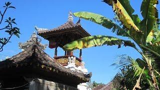 A Quick trip to Ubud & Seminyak, Bali