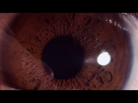 Using CRISPR to Repair Blindness-causing Genetic Defect