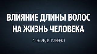 Влияние длины волос на жизнь человека. Александр Палиенко.