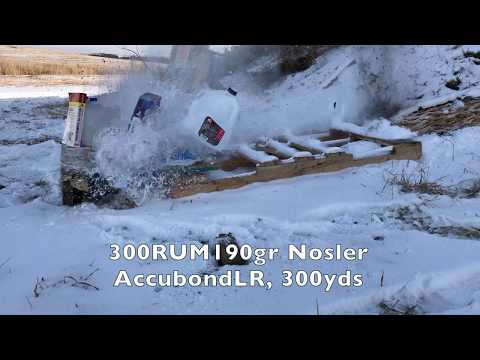 300RUM Nosler Accubond LR190gr Terminal ballistic test 300 yds