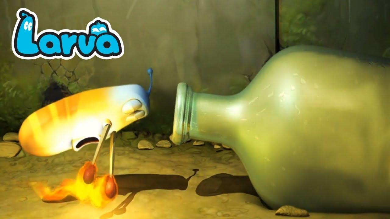 Larva Cartoon Full Movie || Larva Terbaru Full Episode 28 || Cartoons For Children