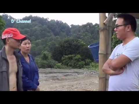 Kampung Tiongkok di Hutan Bogor di Grebek TNI &Polri